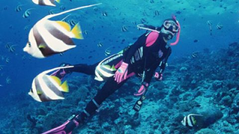 SCUBA Dive as an Intern