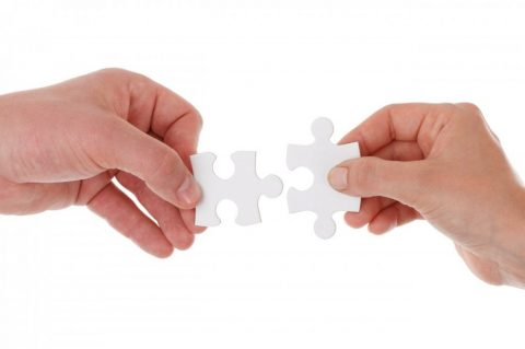Finding the Right Fit – MNC or SME?